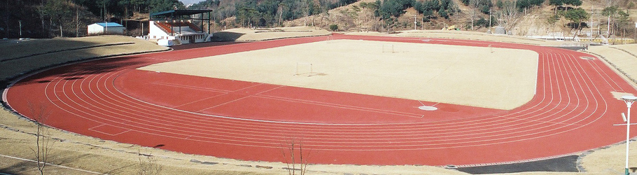 Guensam City Track, South Korea - Decoflex™ SW14 Athletic Flooring