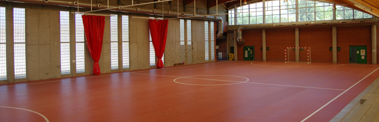 El Boalo Sports Hall, Madrid, Spain - Decoflex D6 Sports Flooring